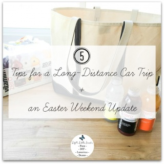 5 Tips for a Long-Distance Car Trip - Here are 5 tips that I find useful on the many long-distance car trips that I have taken with my family and included an update from a recent trip on Easter weekend! #tastehydration #CollectiveBias #ad