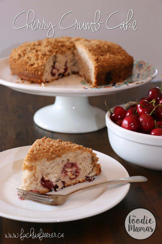 Cherry Crumb Cake - Kaitie Lawlor | Fuchsia Freezer