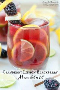 Cranberry Lemon Blackberry Mocktail