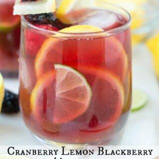 Cranberry Lemon Blackberry Mocktail for SoFabFood