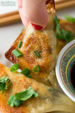 Vegetable Potsticker Dumplings (Steamed or Fried) www.LifesLittleSweets.com