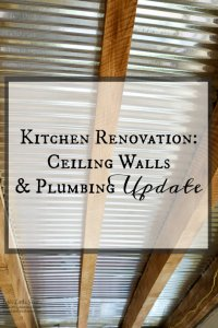 Kitchen Renovation Ceiling Walls and Plumbing Update www.LifesLittleSweets.com