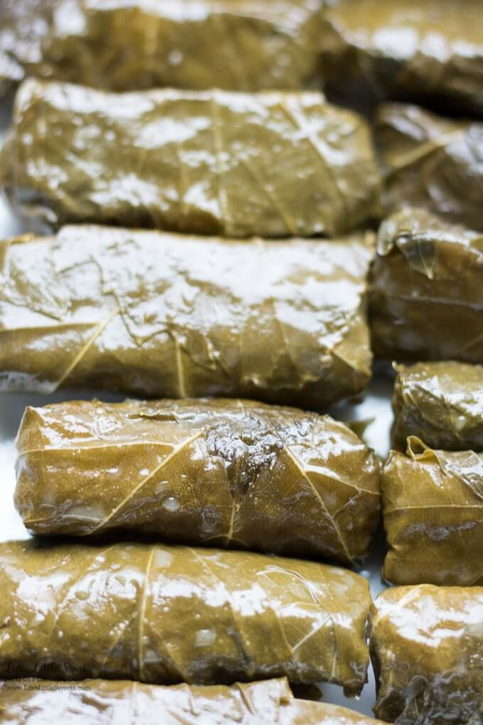 Vegan or meat option | This Stuffed Grape Leaves Recipe is perfect for Spring and Summer; enjoy them at picnics, a party or a family gathering. They are stuffed with cooked rice, dill, mint with fresh squeezed lemon juice and then wrapped in delicious grape leaves. (serve hot or cold, meat and vegan option)