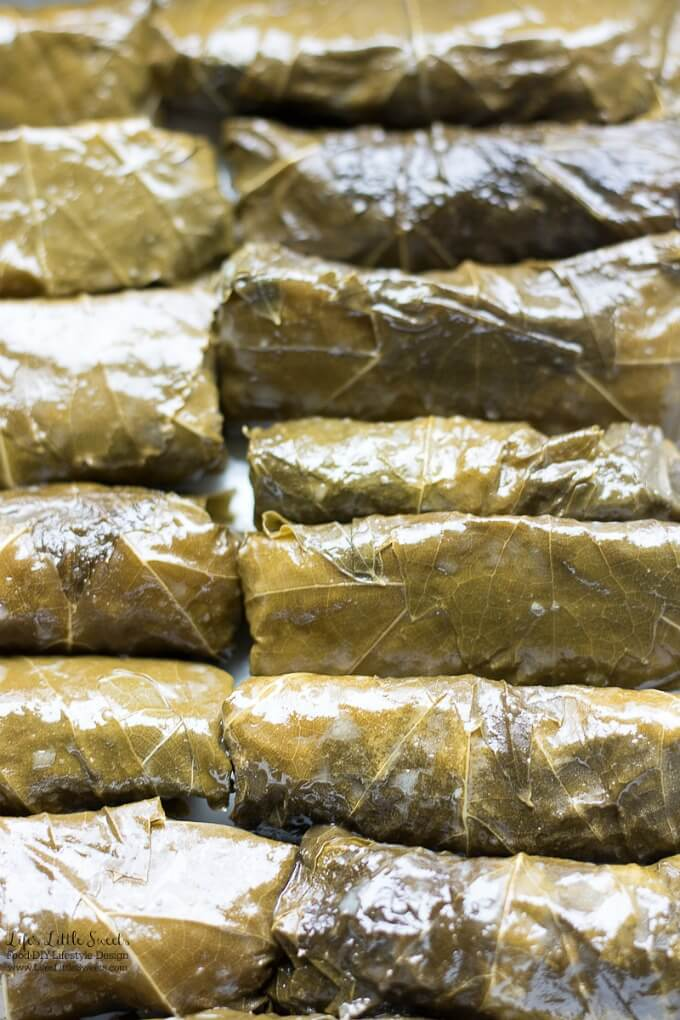 Ready to serve | This Stuffed Grape Leaves Recipe is perfect for Spring and Summer; enjoy them at picnics, a party or a family gathering. They are stuffed with cooked rice, dill, mint with fresh squeezed lemon juice and then wrapped in delicious grape leaves. (serve hot or cold, meat and vegan option)