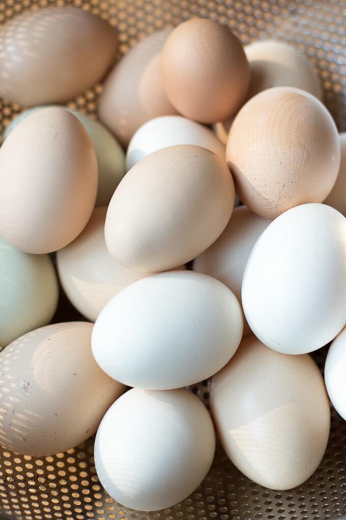 clean farm fresh eggs