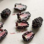 Yogurt-Dipped Blackberry Fruit Bars