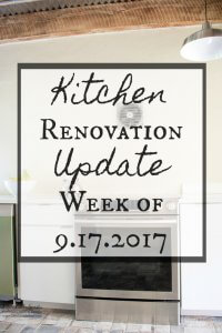 Kitchen Renovation Update Week of 9.17.2017