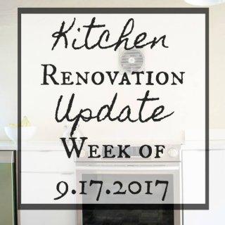 Kitchen Renovation Update Week of 9.17.2017