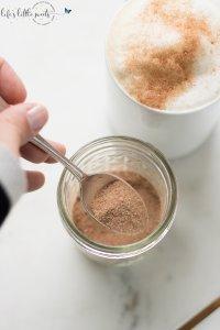 Cocoa Cinnamon Sugar Spice Mixture