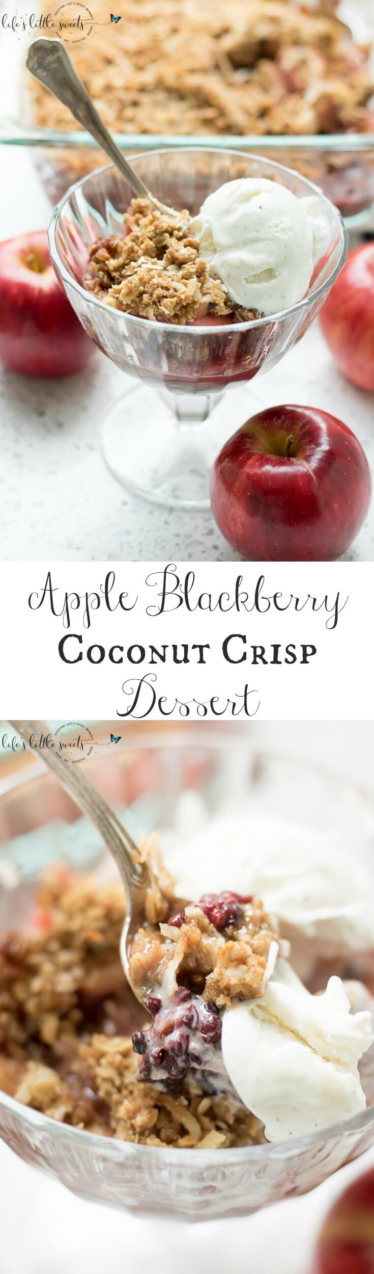 This Apple Blackberry Coconut Crisp recipe has fresh apples and blackberries with a cinnamon-brown sugar and coconut oatmeal topping. #apples #blackberries #dessert #crisp #fruitcrisp #fruit #berries #sweet #oats #coconut