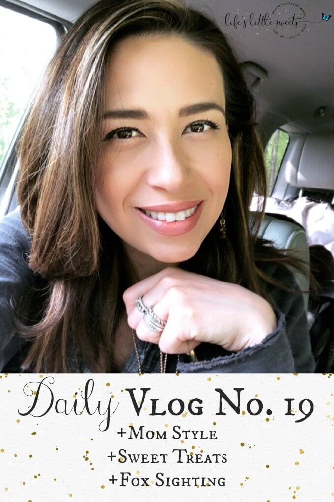 Daily Vlog No. 19 - Mom Style, Sweet Treats, Fox Sighting (video) #vlog #vlogger #blog #blogger #wahm #sahm #foodphotograher #mom #momlife #nature #ootd #momstyle