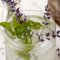 Lavender Mint Water