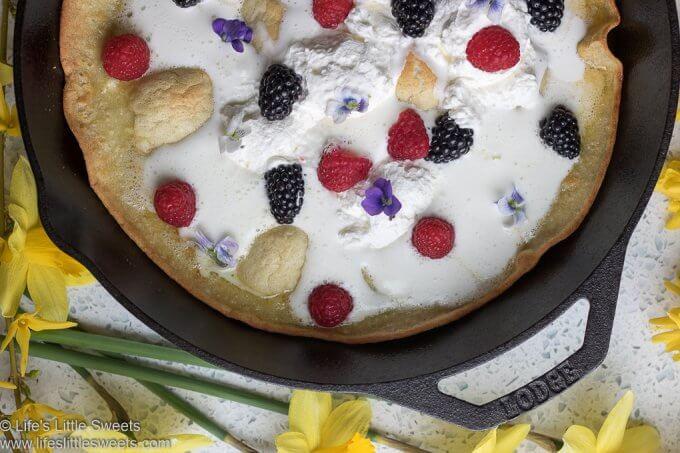 Gluten-Free Dutch Baby Pancake Recipe lifeslittlesweets.com