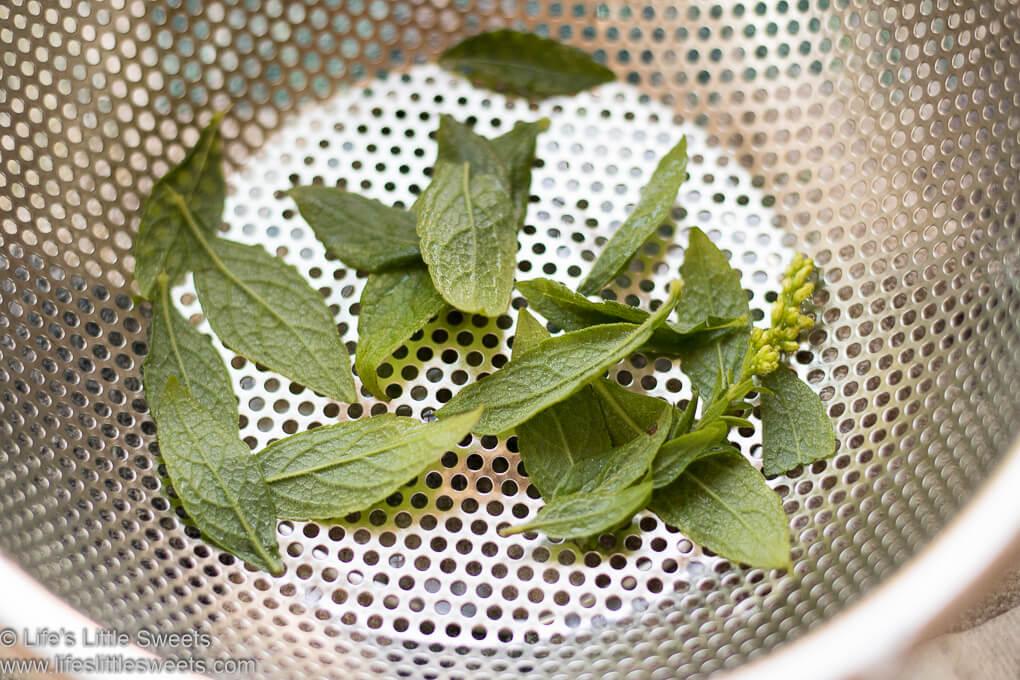 Goldenrod Tea lifeslittlesweets.com