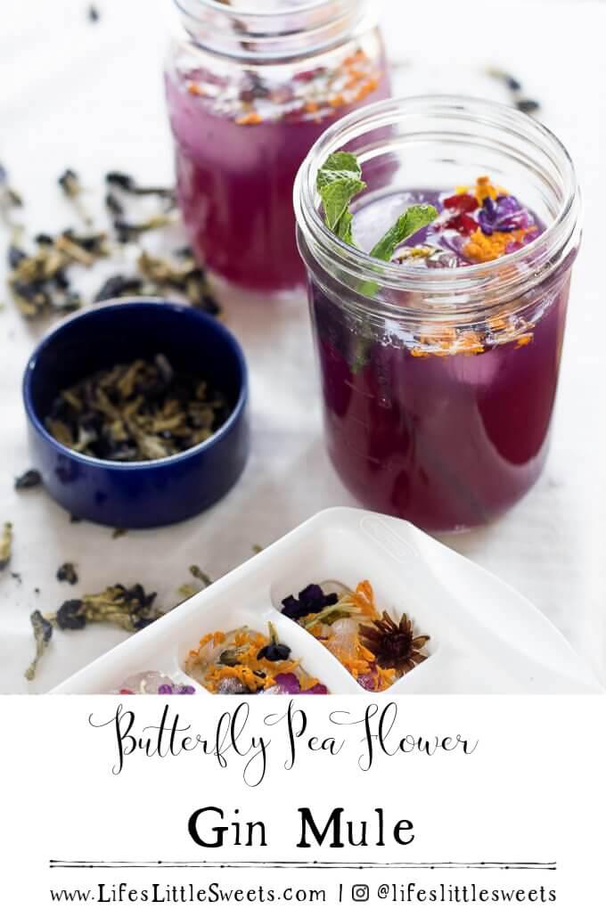 Butterfly Pea Flower Gin Mule #gin #drink #Butterflypeaflower #mule #cocktail #vegan #glutenfree