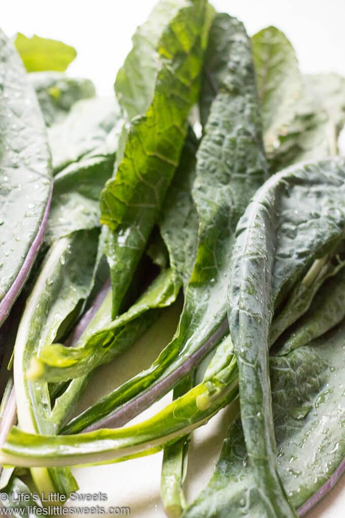 Air Fryer Kale Chips #kale #kalechips #airfryer #airfryerrecipes #easy #healthysnacks #snacks #vegan #glutenfree #vegetarian #sides #healthy #Paleo www.lifeslittlesweets.com