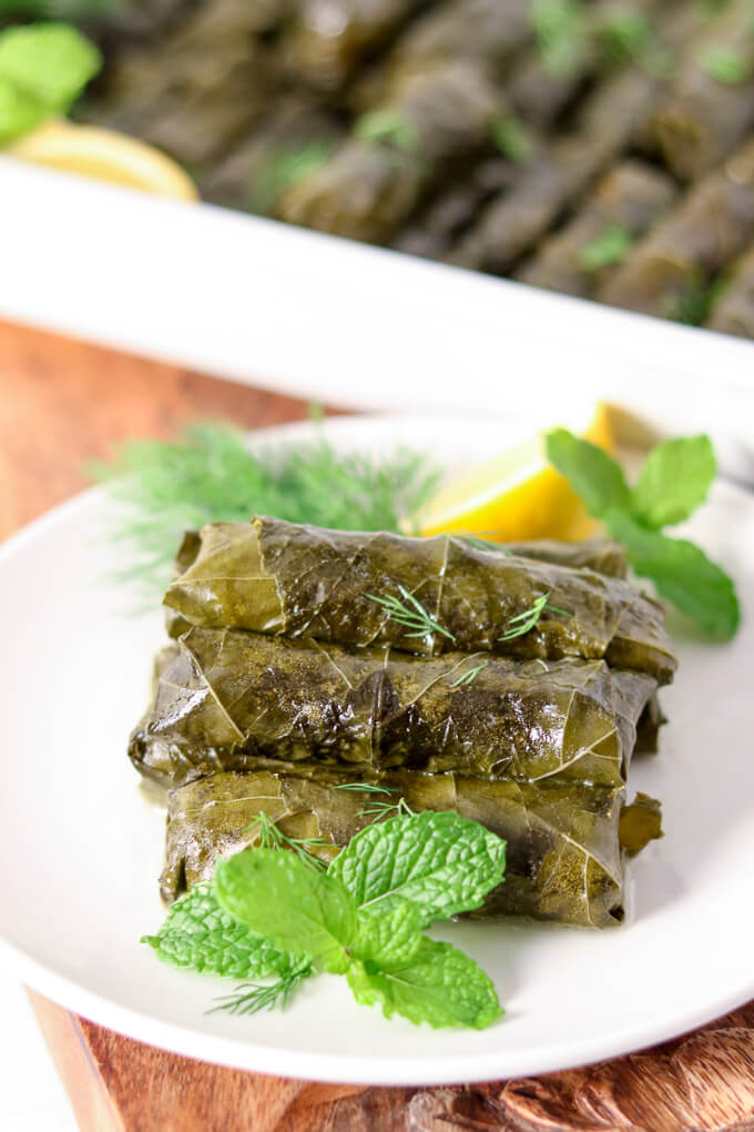 Vegetarian Stuffed Grape Leaves on Sofabfood