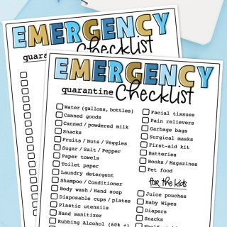 Emergency Quarantine Checklist Printable