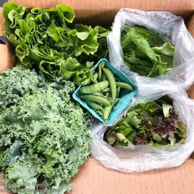 Organic CSA Box Week 2