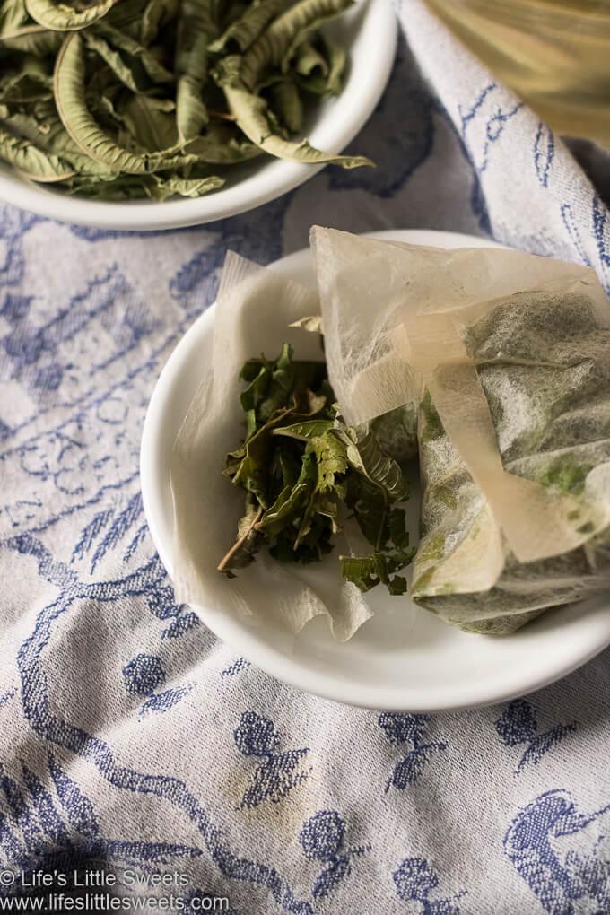 Lemon Verbena Tea Recipe