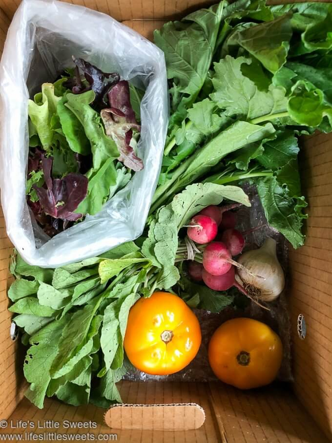 Organic CSA Share Box Week 7