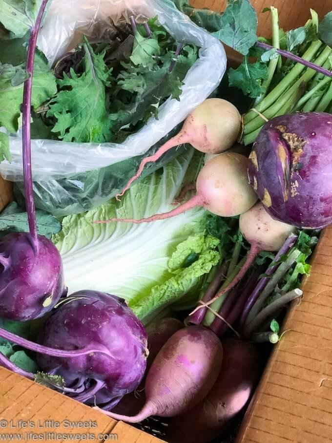 Organic CSA Share Box Week 9 - box of October organic produce