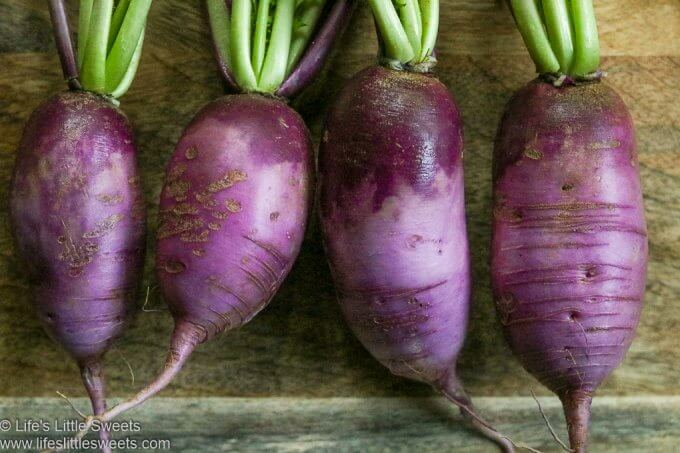 raw purple Daikon Radishes