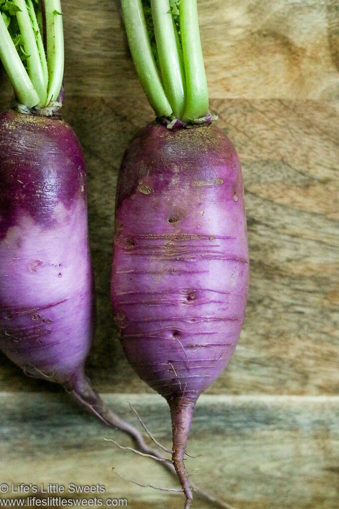 long Purple Daikon Radishes close up view