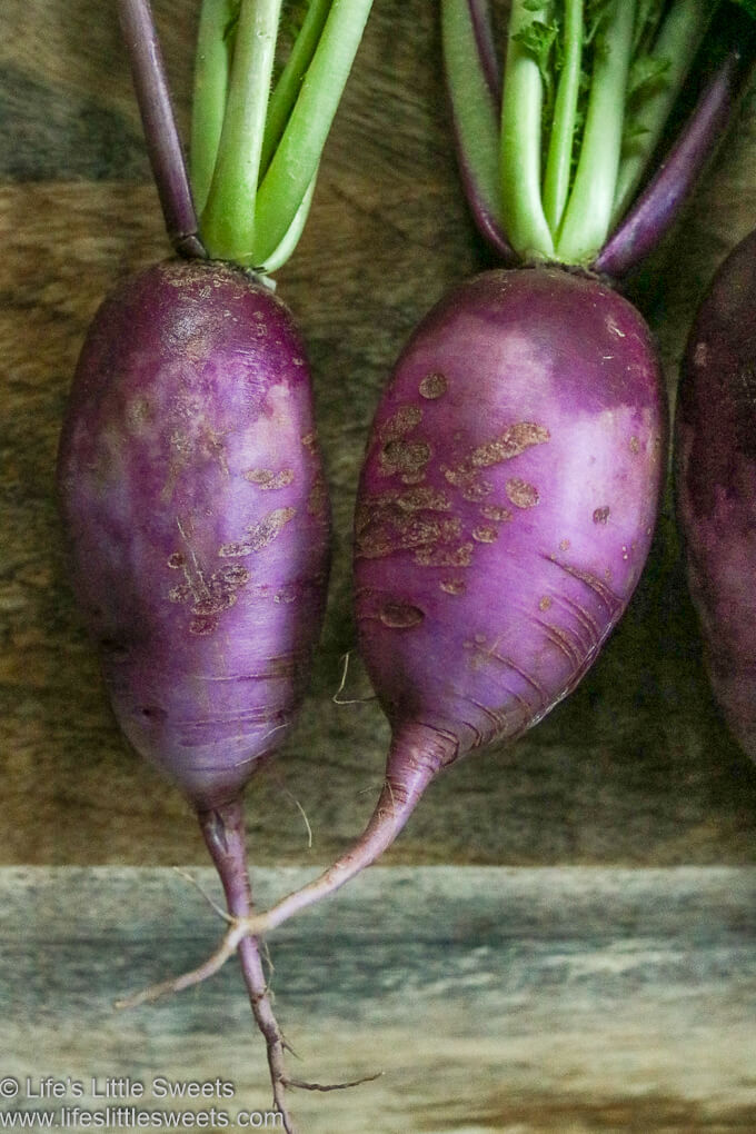 two Purple Daikon Radishes