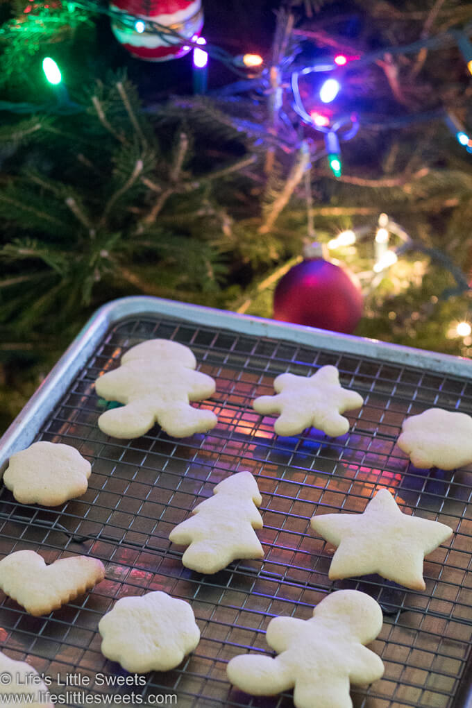 plain holiday Cutout Sugar Cookies with festive colorful lights on a Christmas tree in the background