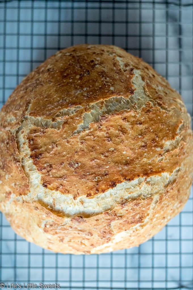 No-Knead Oatmeal Bread crust overhead