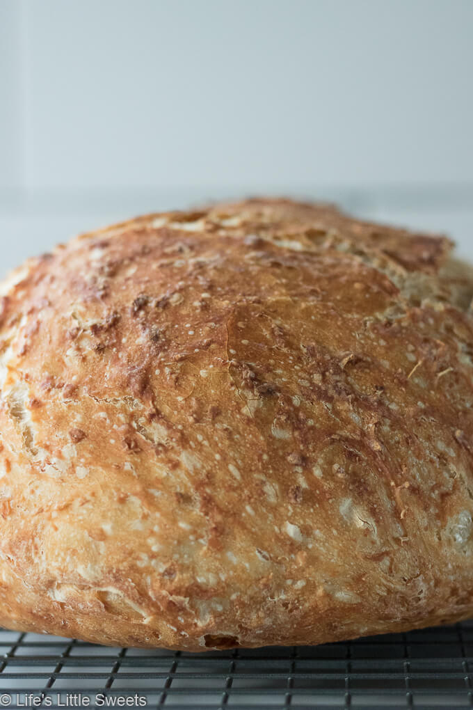 No-Knead Oatmeal Bread crust